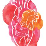 At the Heart of Severe Obesity: Chronic Heart Failure and the Role of Bariatric Surgery
